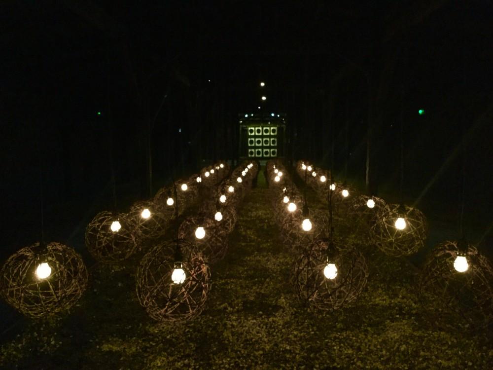 マイダネクで亡くなった犠牲者を悼む
