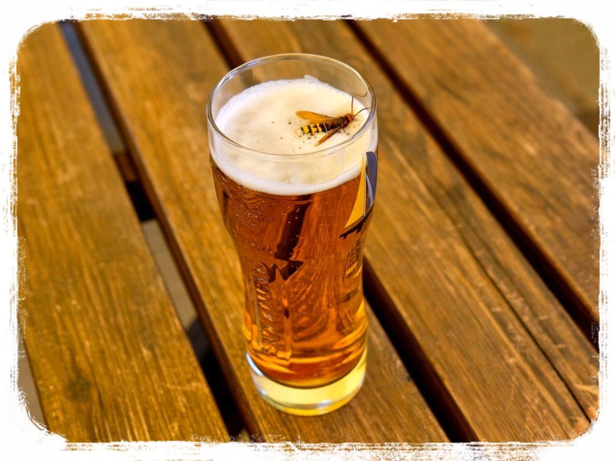 ビール ハチ